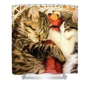 Elmos Nap Time---soft Look Shower Curtain