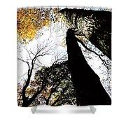Elora Trees II Shower Curtain