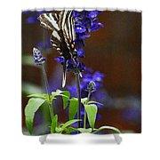 Elusive Zebra Swallowtail Shower Curtain