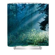 Elven Forest Shower Curtain