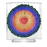 Emanation Of Compassion Shower Curtain
