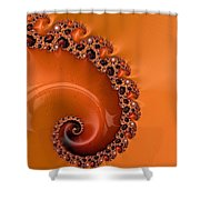 Embellished Wood Grain Shower Curtain