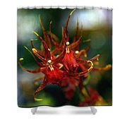 Embraced By An Orchid Shower Curtain by Karen Wiles