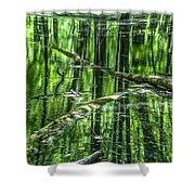 Emerald Reflections Shower Curtain