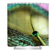 Emerald City Shower Curtain