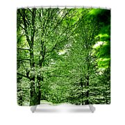 Emerald Clearing Shower Curtain