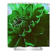 Emerald Green Beauty Shower Curtain