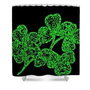 Emerald Isle Shamrocks  Shower Curtain