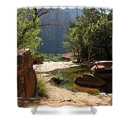 Emerald Pool View Shower Curtain