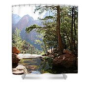 Emerald Pool - Zion Np Shower Curtain