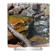 Emerald Pools Close Up Shower Curtain