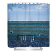 Emerald Seas Shower Curtain
