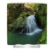 Emerald Waterfall Shower Curtain by Davorin Mance
