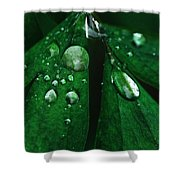 Emerald Rain Shower Curtain
