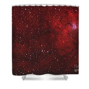 Emission Nebula IIn Perseus Shower Curtain