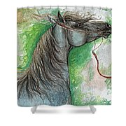 Emon Polish Arabian Horse 1 Shower Curtain