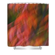 Emotion In Color Shower Curtain