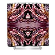 Empress Abstract Triptych Shower Curtain