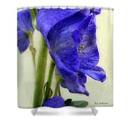 Empress Of The Blues Shower Curtain