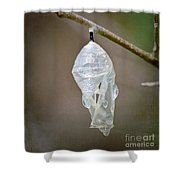 Empty Butterfly Chrysalis Shower Curtain