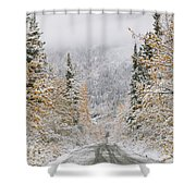 Empty Road Passing Through A Forest Shower Curtain