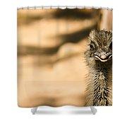 Emu Portrait Shower Curtain