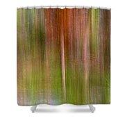 Encantamiento Shower Curtain
