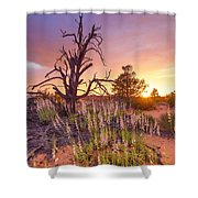 Enchanted Shower Curtain