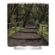 Enchanted Forest Garajonay National Park La Gomera Spain Shower Curtain