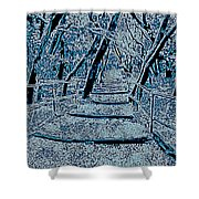 Enchanted Forest In The Winter Shower Curtain