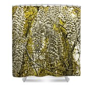 Enchanted Garden Shower Curtain