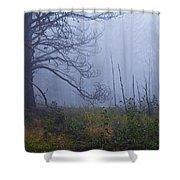 Enchanted Mist - Casper Mountain - Casper Wyoming Shower Curtain