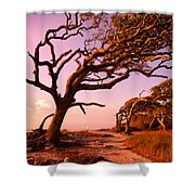 Enchanted Park Bench Shower Curtain