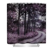 Enchanted Seney Path Shower Curtain