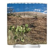 Enchanted Space Shower Curtain