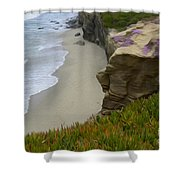 Enchanted Spaces California La Jolla Shower Curtain