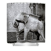 The Indian Elephant Shower Curtain
