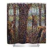 Encounter Shower Curtain