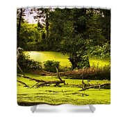 End Of Path Merged Image Shower Curtain