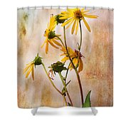 End Of Summer Bouquet Shower Curtain