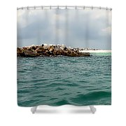 End Of The Jetty Shower Curtain