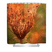 End Of The Season Shower Curtain