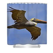 Endangered No More Shower Curtain