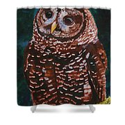 Endangered - Spotted Owl Shower Curtain