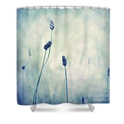 Endearing Shower Curtain by Priska Wettstein