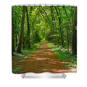 Endless Trail Into The Forest Shower Curtain