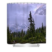 Enduring Winter Shower Curtain