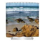 Energizing Seascape At Spanish Bay Shower Curtain