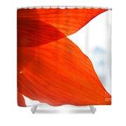 Enfolding In Orange Shower Curtain