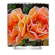 Engelmann Prickly Pear Cactus Flowers In Big Bend National Park-texas Shower Curtain